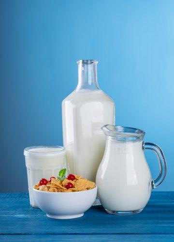 במיוחד לשבועות: איך חלב משפיע על הגוף?